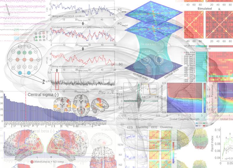 Collage Multimodal Imaging