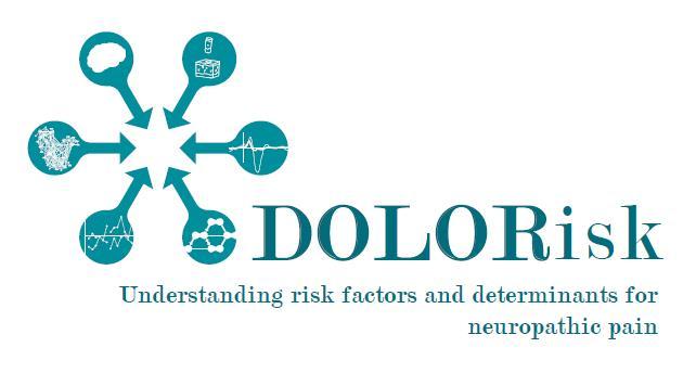 Dolorisk_Logo
